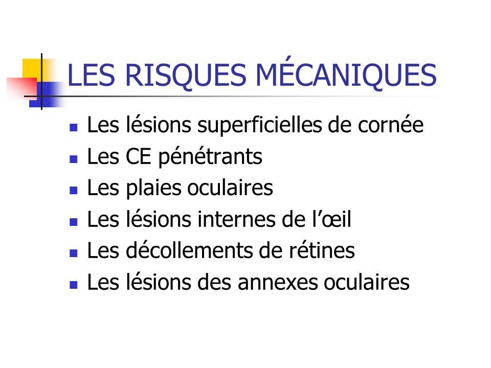 LES RISQUES MÉCANIQUES