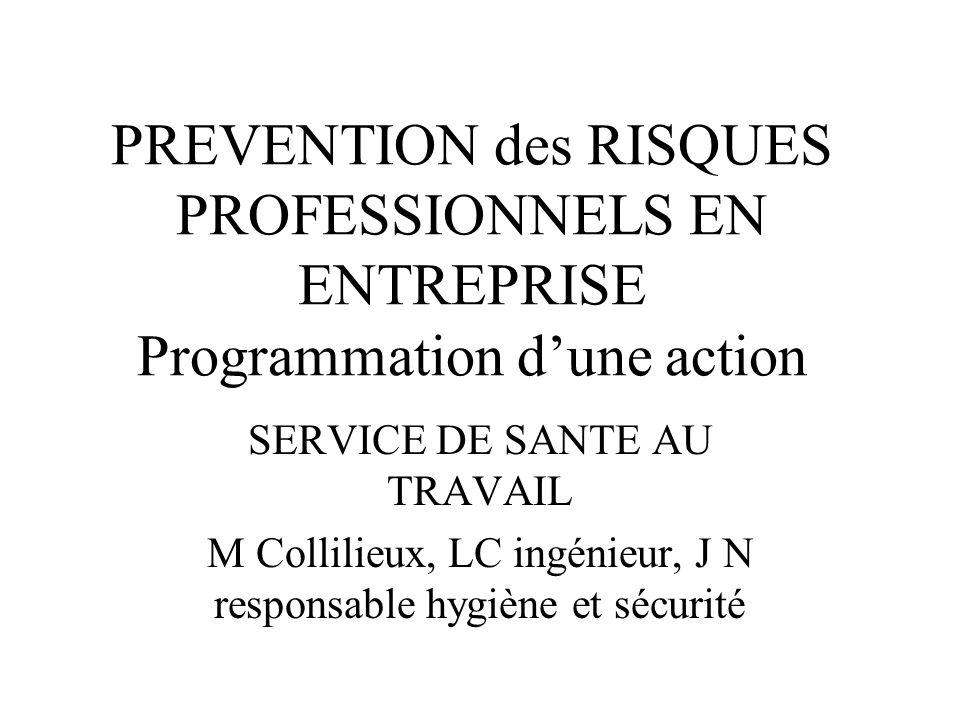 PREVENTION des RISQUES PROFESSIONNELS EN ENTREPRISE Programmation d'une action