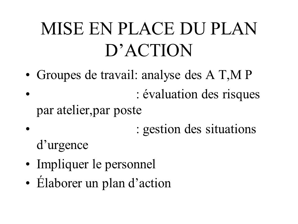 MISE EN PLACE DU PLAN D'ACTION