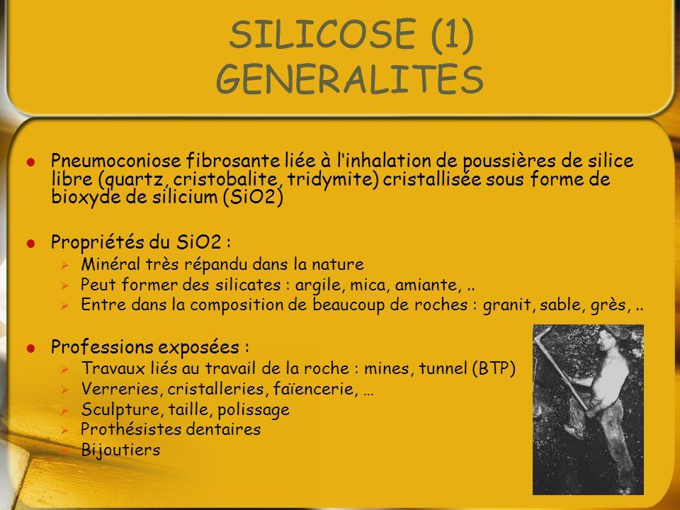 SILICOSE (1) GENERALITES