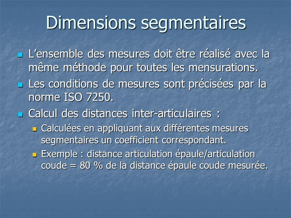 Dimensions segmentaires
