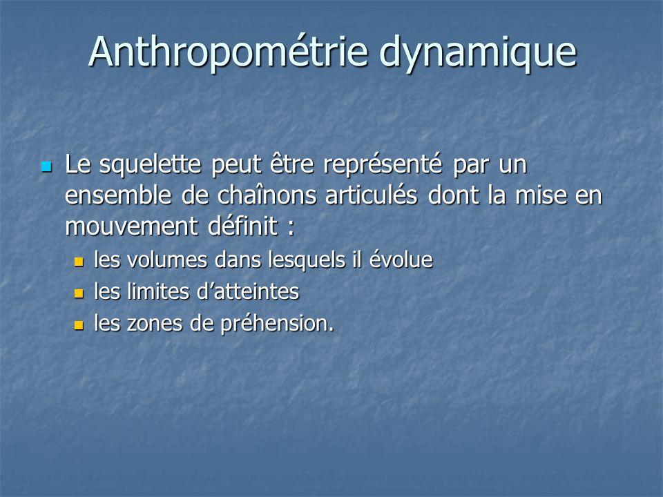 Anthropométrie dynamique