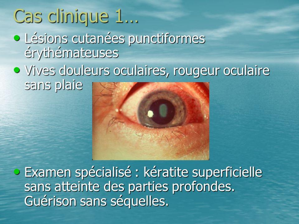Cas clinique 1… Lésions cutanées punctiformes érythémateuses