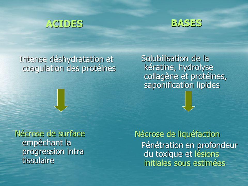 ACIDES BASES Nécrose de liquéfaction