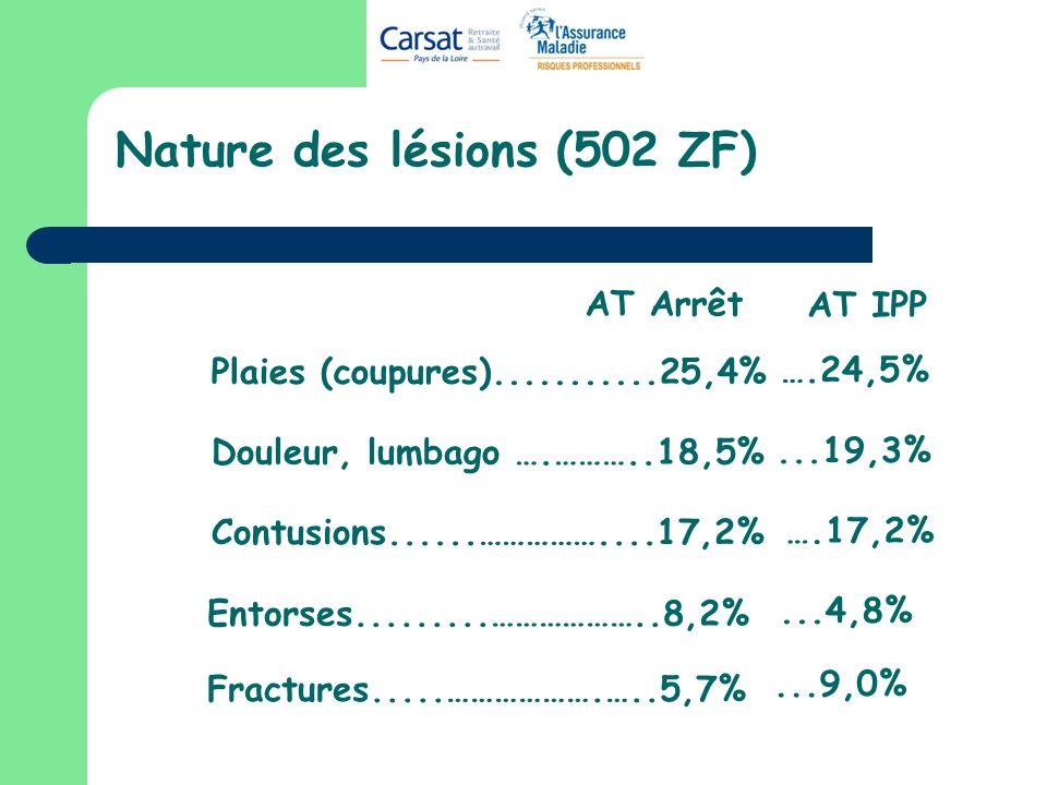 Nature des lésions (502 ZF)