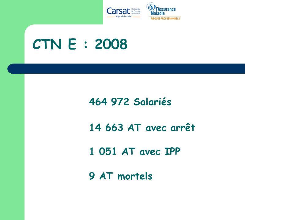 CTN E : 2008 464 972 Salariés 14 663 AT avec arrêt 1 051 AT avec IPP