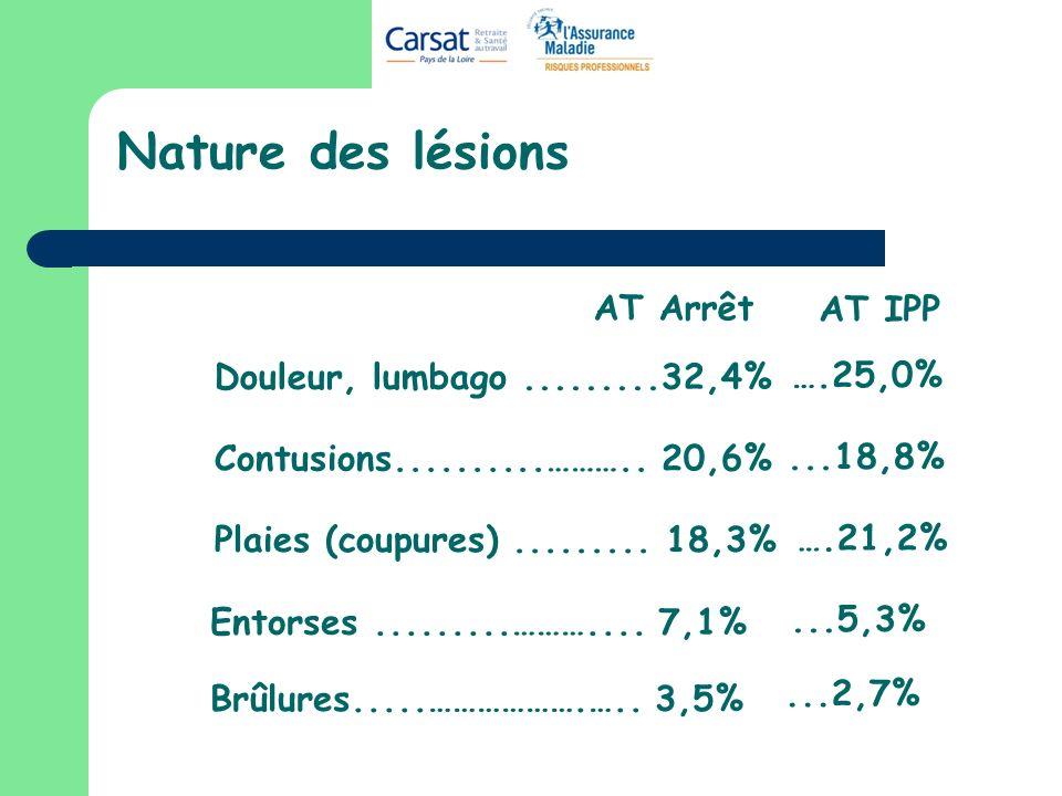Nature des lésions AT Arrêt AT IPP Douleur, lumbago .........32,4%