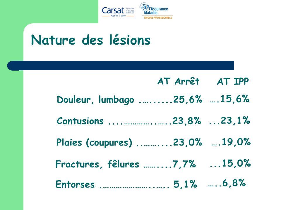 Nature des lésions AT Arrêt AT IPP Douleur, lumbago .…......25,6%