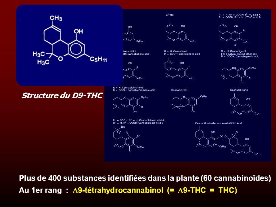 Structure du D9-THC Plus de 400 substances identifiées dans la plante (60 cannabinoïdes)