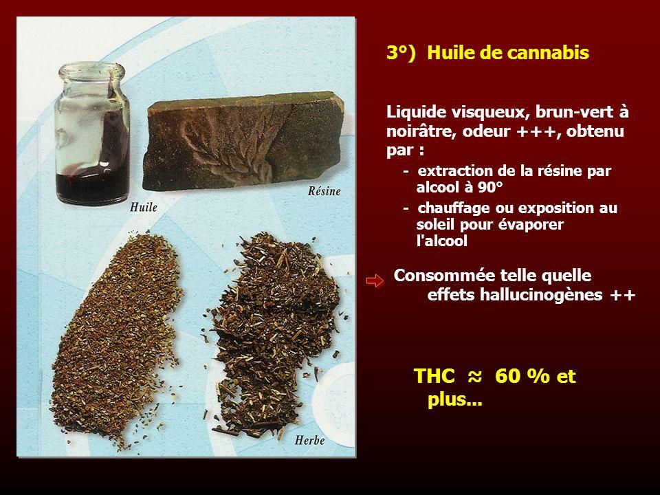 THC ≈ 60 % et plus... 3°) Huile de cannabis