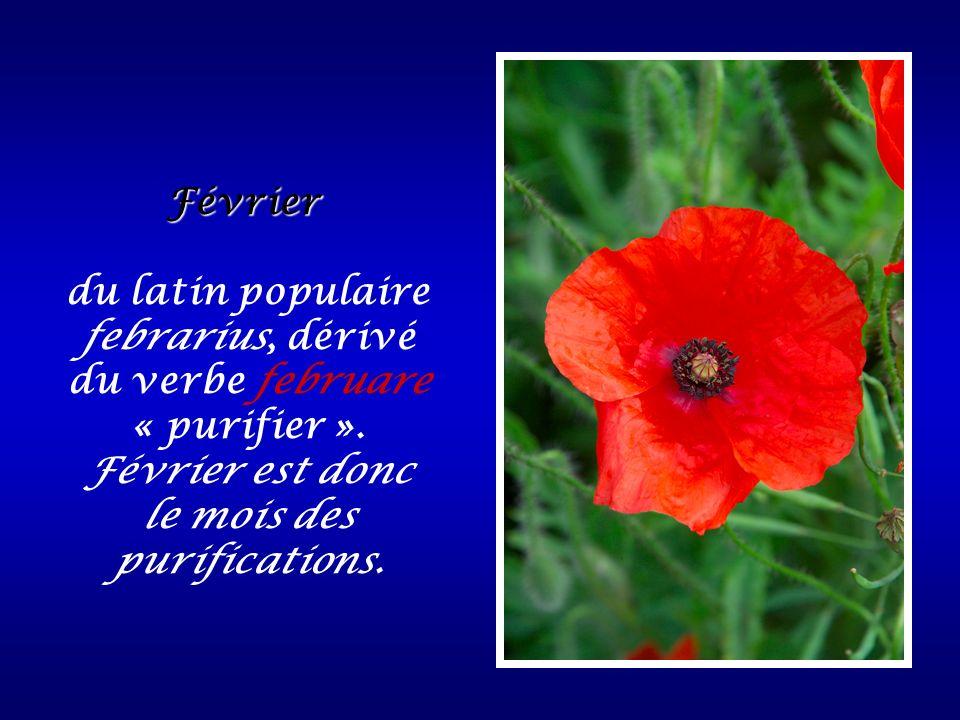 du latin populaire febrarius, dérivé du verbe februare « purifier ».