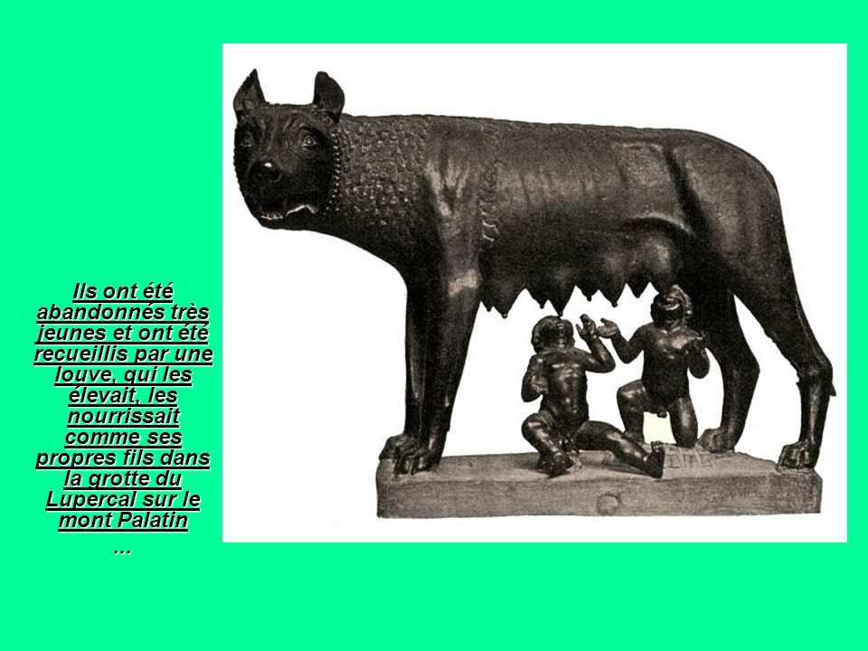 Ils ont été abandonnés très jeunes et ont été recueillis par une louve, qui les élevait, les nourrissait comme ses propres fils dans la grotte du Lupercal sur le mont Palatin