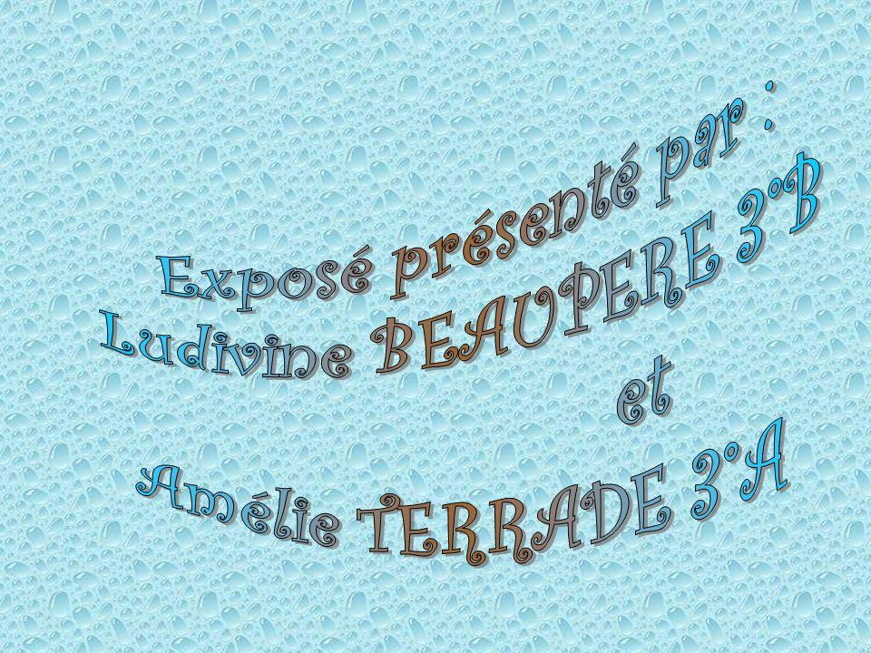 Exposé présenté par : Ludivine BEAUPERE 3°B et Amélie TERRADE 3°A