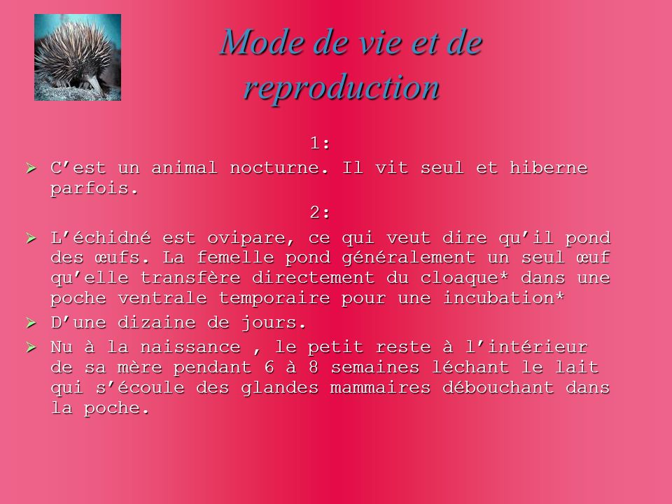 Mode de vie et de reproduction