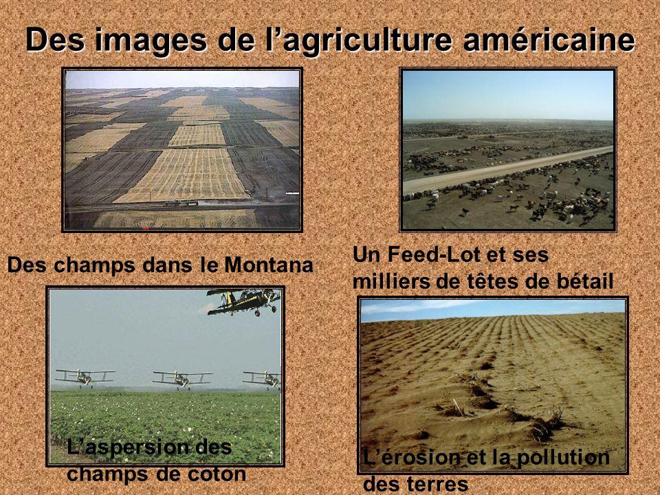 Des images de l'agriculture américaine