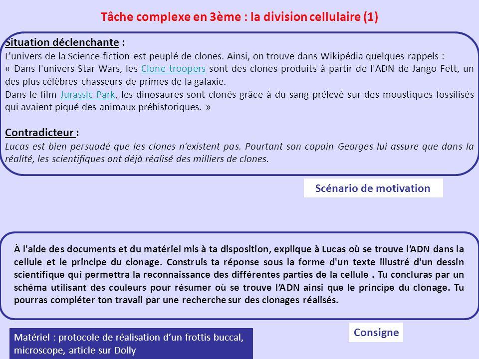 Tâche complexe en 3ème : la division cellulaire (1)
