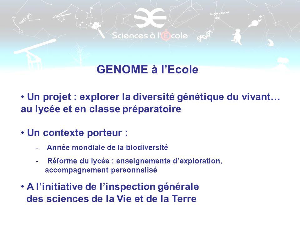GENOME à l'Ecole Un projet : explorer la diversité génétique du vivant… au lycée et en classe préparatoire.