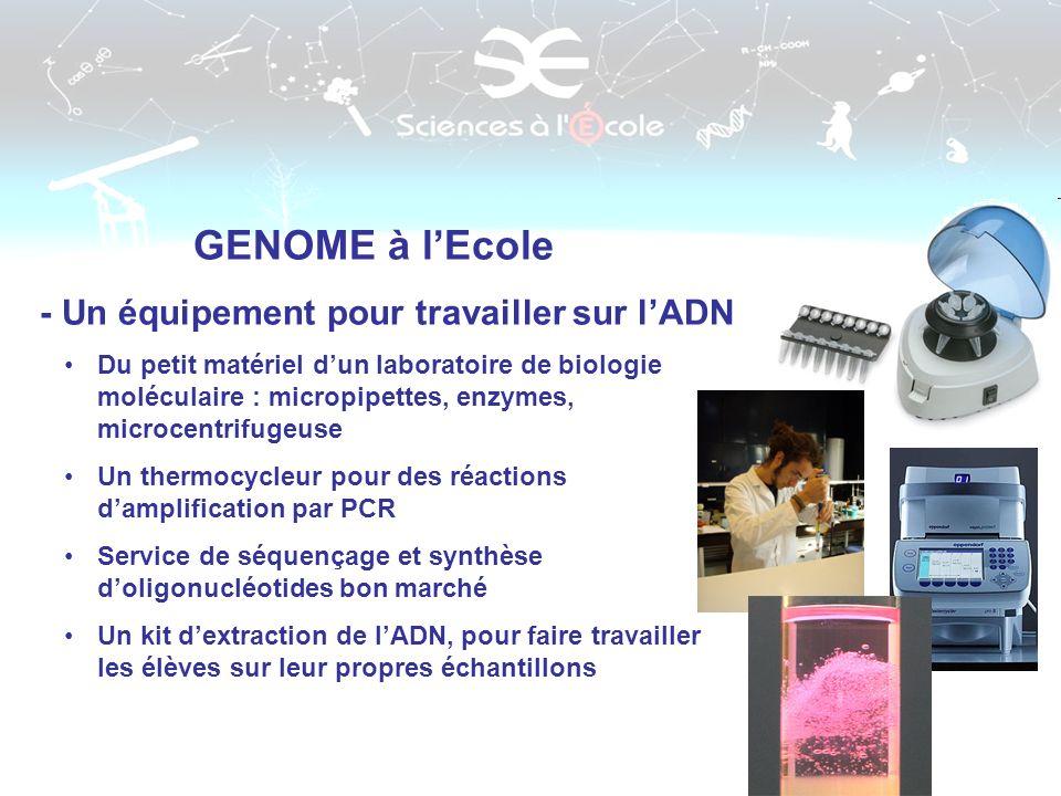 GENOME à l'Ecole - Un équipement pour travailler sur l'ADN