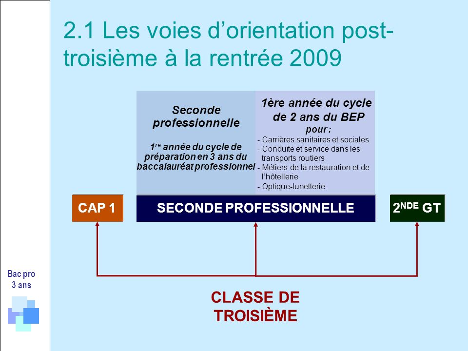 2.1 Les voies d'orientation post- troisième à la rentrée 2009