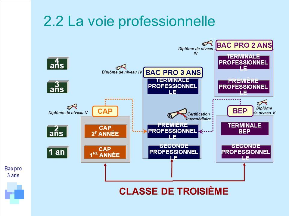 2.2 La voie professionnelle