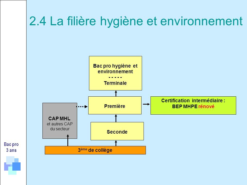 2.4 La filière hygiène et environnement