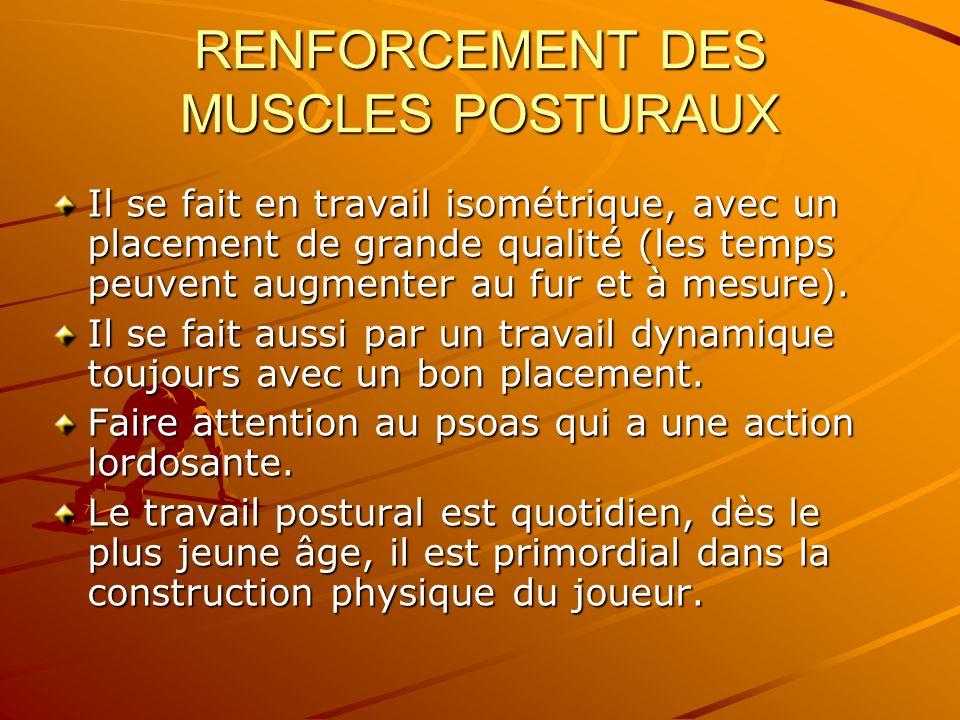 RENFORCEMENT DES MUSCLES POSTURAUX