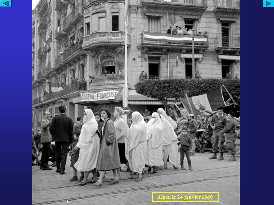 Alger, le 24 janvier 1960