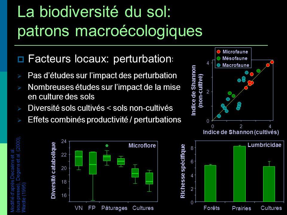 La biodiversité du sol: patrons macroécologiques