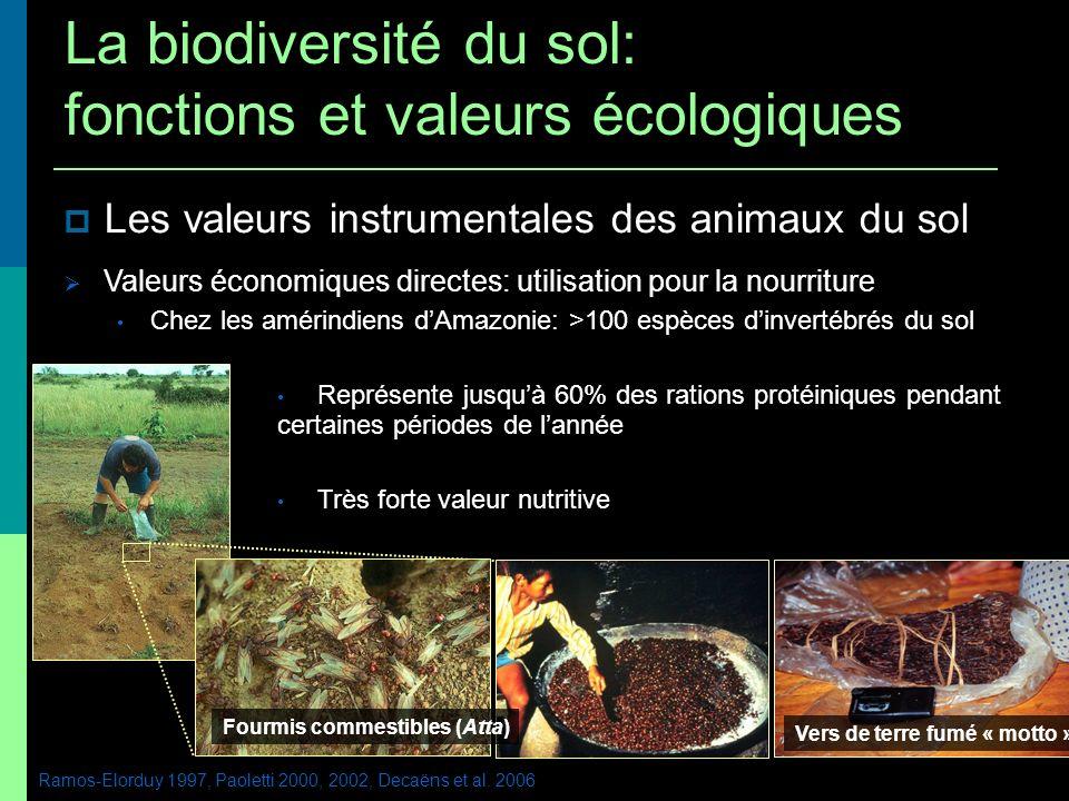 La biodiversité du sol: fonctions et valeurs écologiques