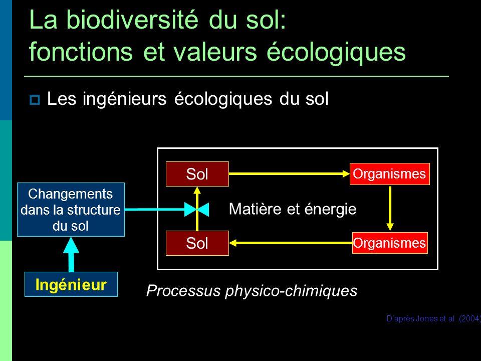 Changements dans la structure du sol