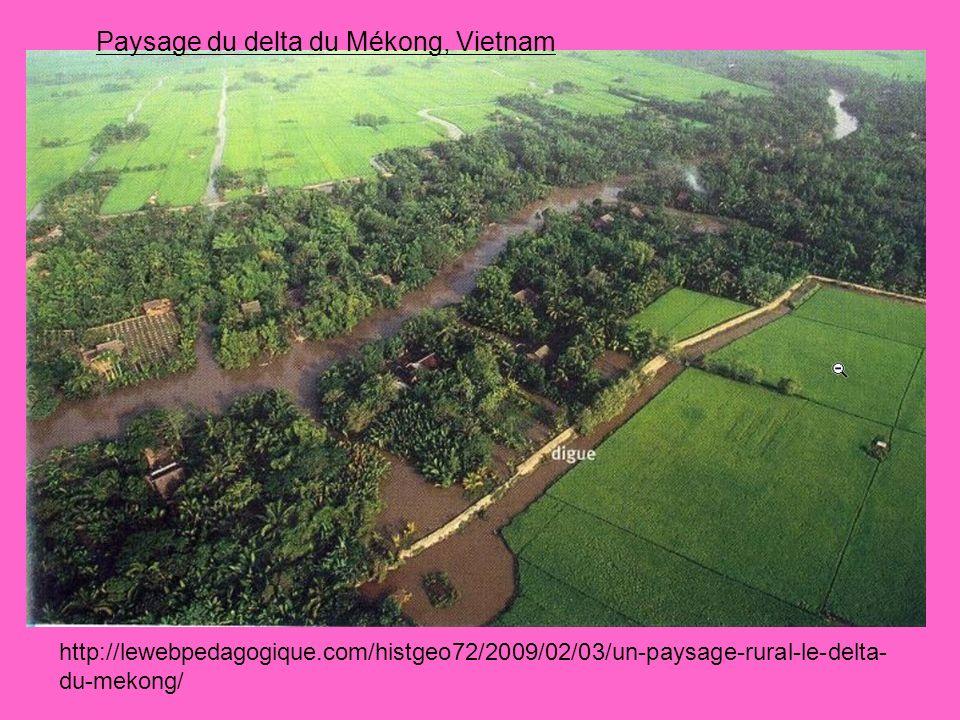 Paysage du delta du Mékong, Vietnam