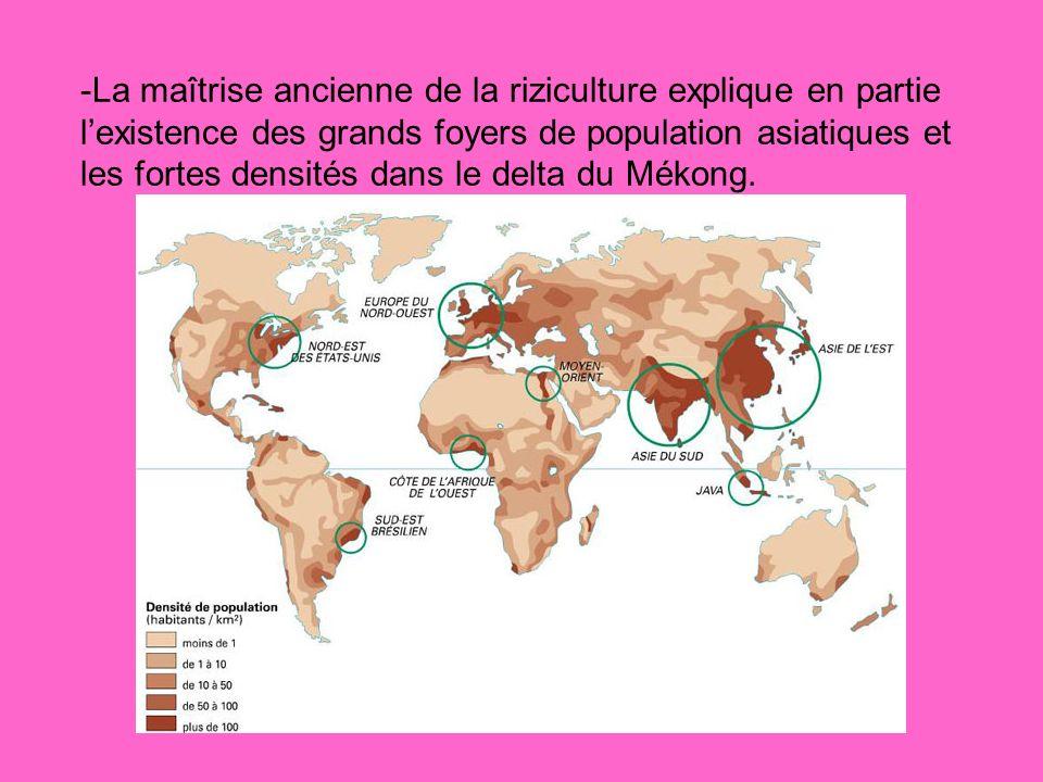 -La maîtrise ancienne de la riziculture explique en partie l'existence des grands foyers de population asiatiques et les fortes densités dans le delta du Mékong.