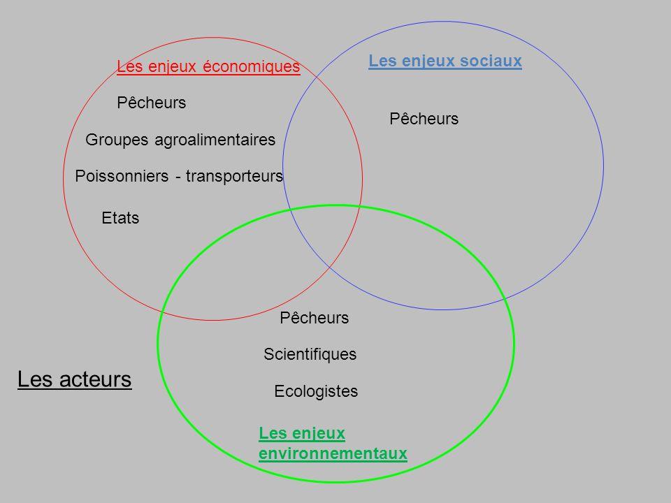 Les acteurs Les enjeux sociaux Les enjeux économiques Pêcheurs