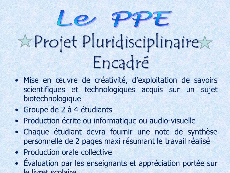 Projet Pluridisciplinaire Encadré