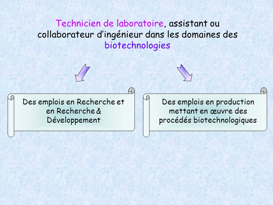 Des emplois en Recherche et en Recherche & Développement