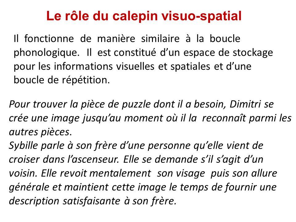 Le rôle du calepin visuo-spatial
