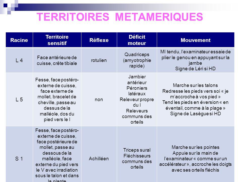 TERRITOIRES METAMERIQUES