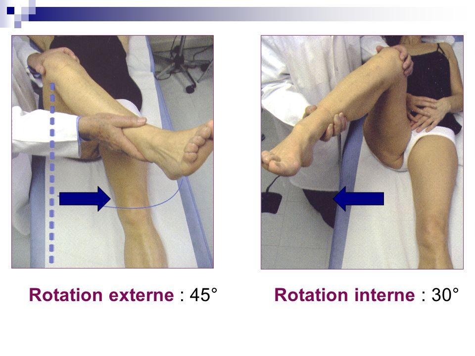 Rotation externe : 45° Rotation interne : 30°