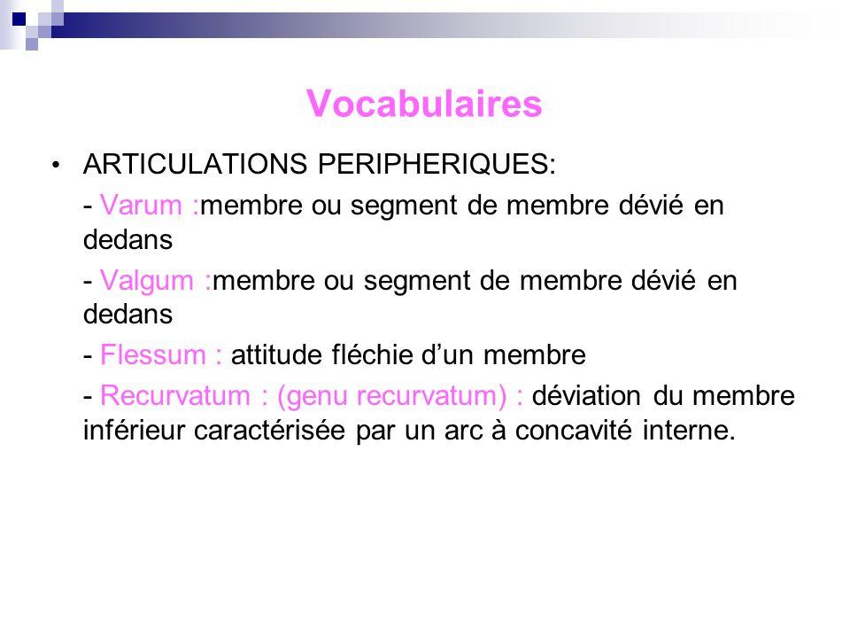 Vocabulaires ARTICULATIONS PERIPHERIQUES: