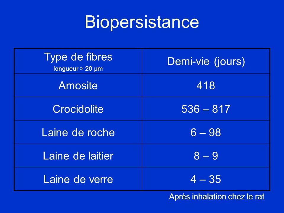 Biopersistance Type de fibres Demi-vie (jours) Amosite 418 Crocidolite
