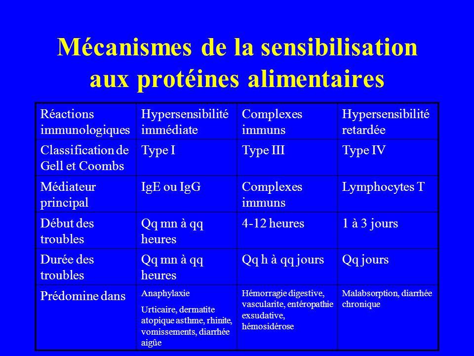 Mécanismes de la sensibilisation aux protéines alimentaires
