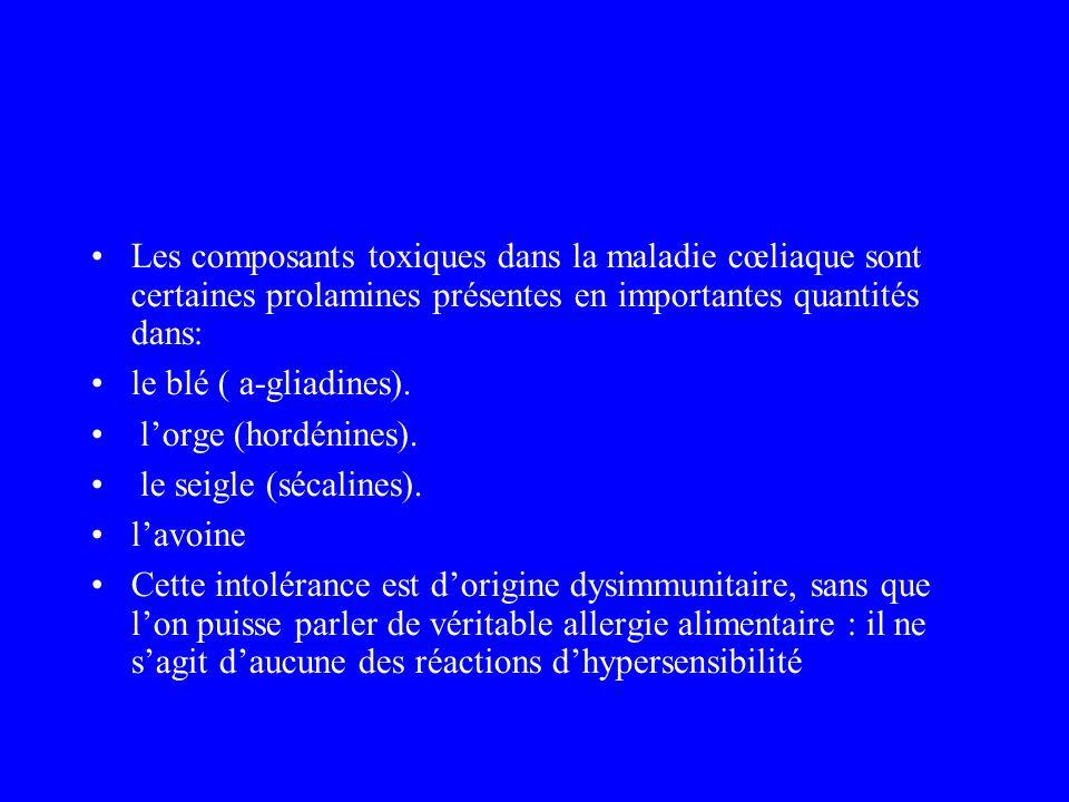 Les composants toxiques dans la maladie cœliaque sont certaines prolamines présentes en importantes quantités dans: