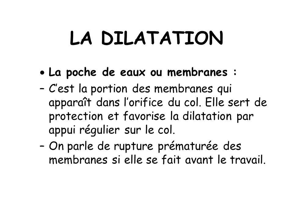 LA DILATATION La poche de eaux ou membranes :