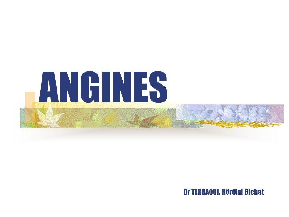 ANGINES Dr TERBAOUI, Hôpital Bichat