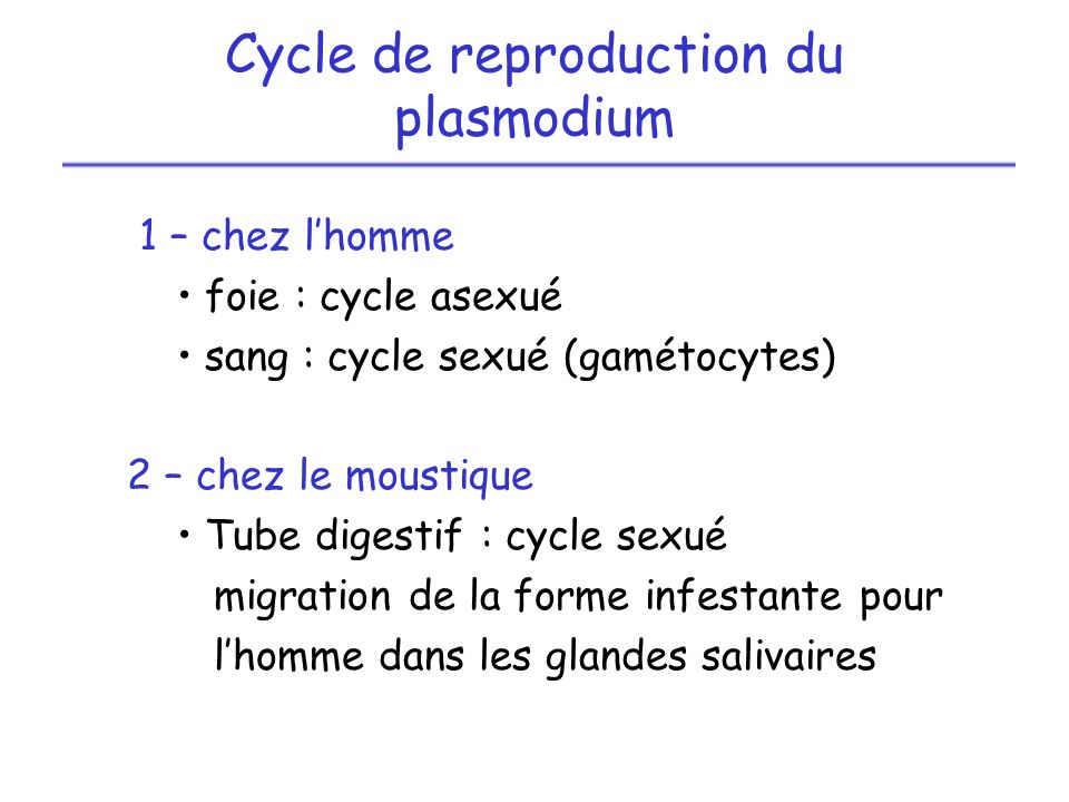 Cycle de reproduction du plasmodium
