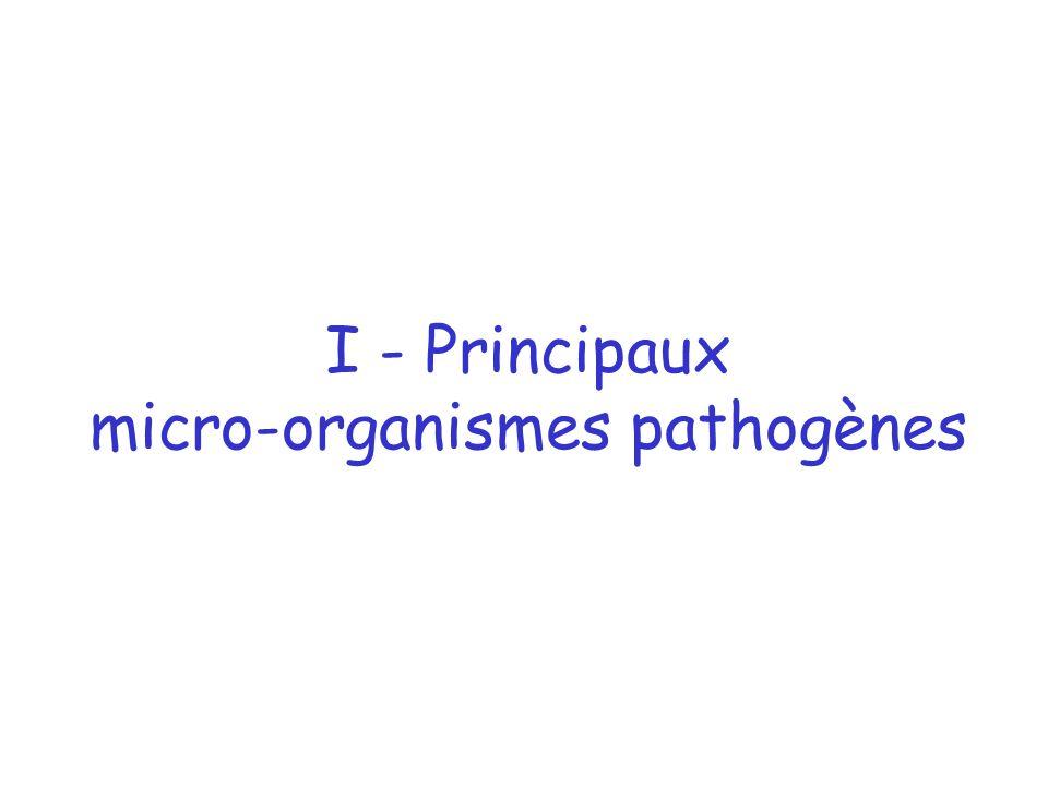 I - Principaux micro-organismes pathogènes