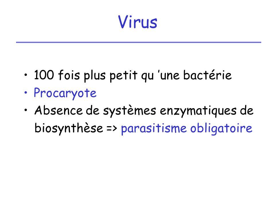 Virus 100 fois plus petit qu 'une bactérie Procaryote