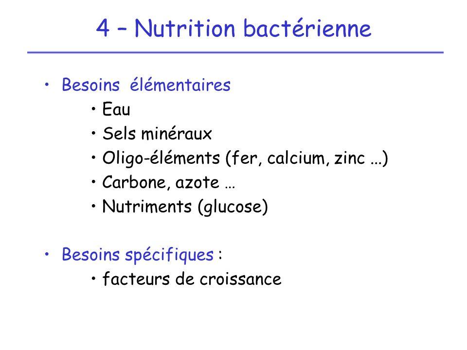 4 – Nutrition bactérienne