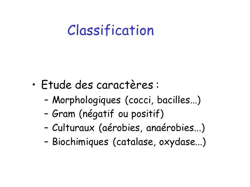 Classification Etude des caractères :