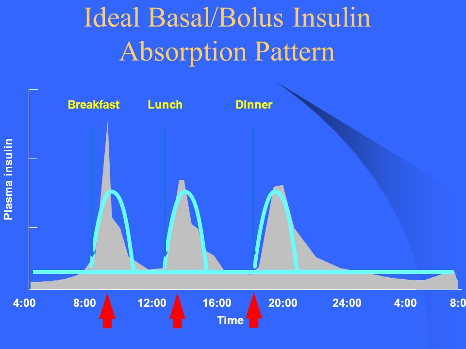 Ideal Basal/Bolus Insulin Absorption Pattern